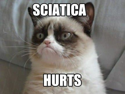 Rwa kulszowa boli, mówi kot