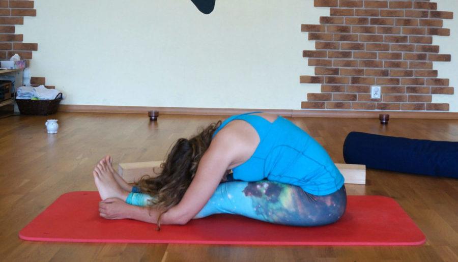 Hatha a Yin Joga i 5 zasad praktyki Yin – zrób to dobrze!